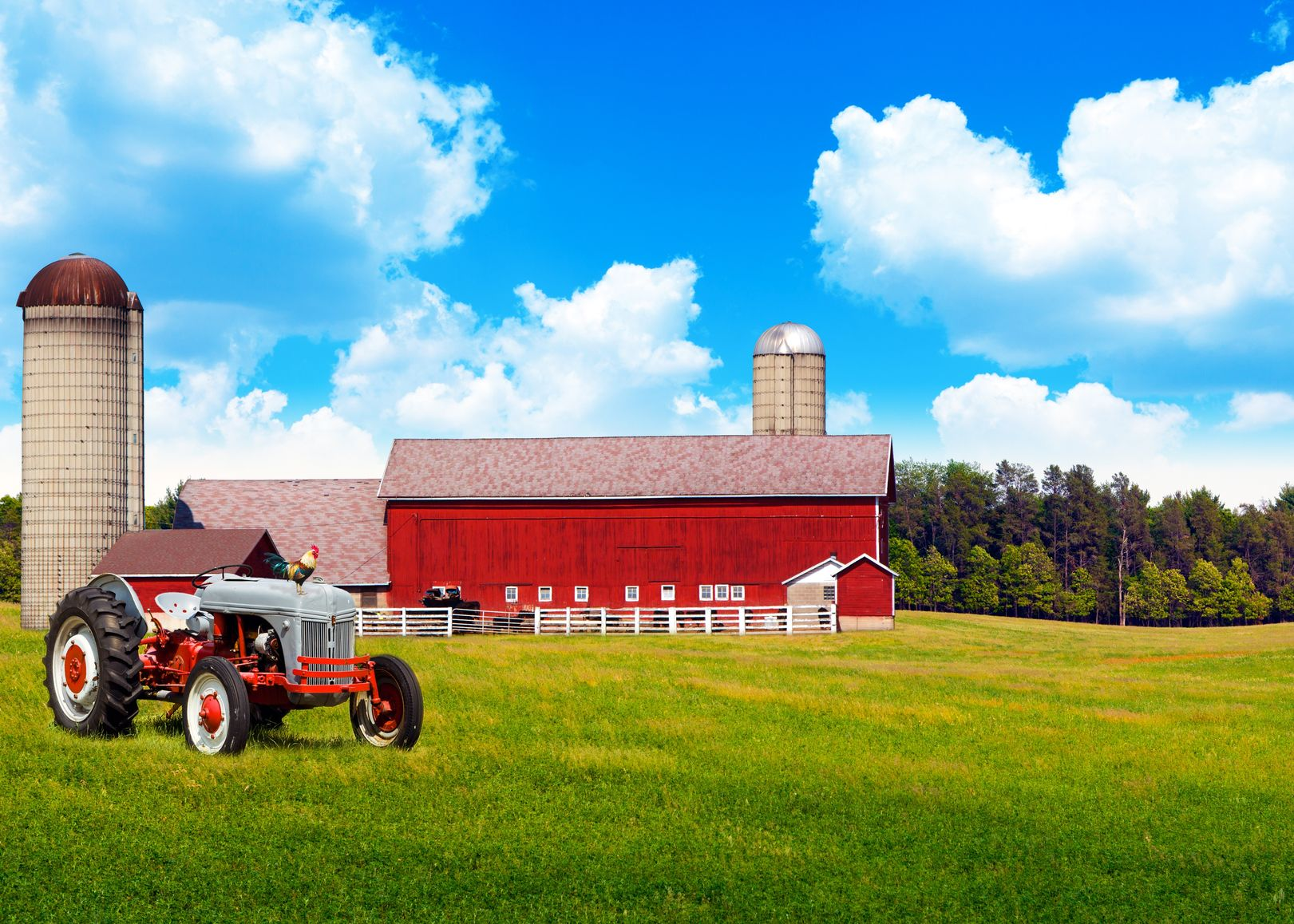 Redding, CA. Farm & Ranch Insurance